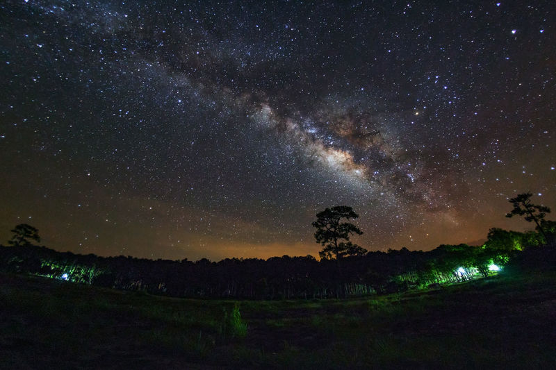 Milky Way at Phu Hin Rong Kla National Park,Phitsanulok Thailand. Astronomy Beauty In Nature Constellation Galaxy Illuminated Landscape Milky Way Nature Night No People Outdoors Scenics Sky Space Star - Space Starry Tranquil Scene Tranquility Tree