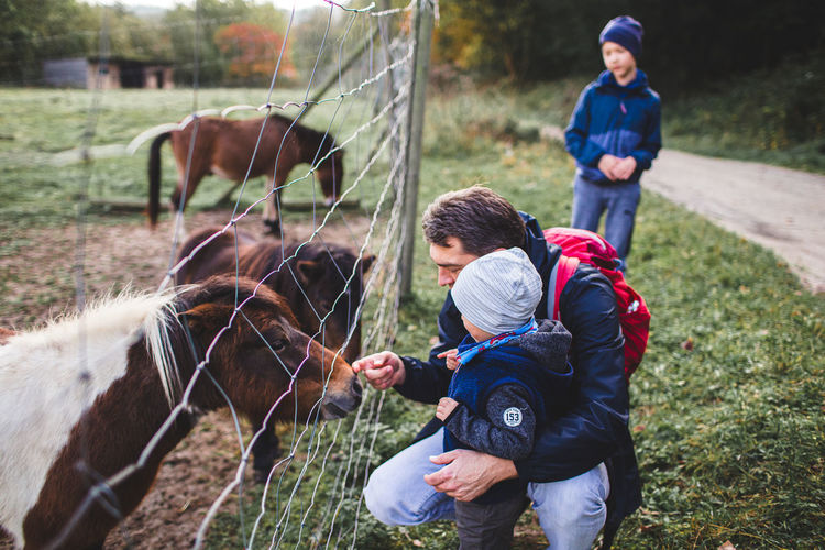 Father and son touching horse by chainlink fence outdoors