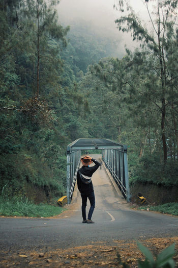 Rear view of man standing on road while looking at bridge in forest