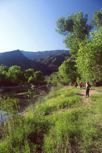 Backpacking California USA Hiking Ventura Beauty In Nature Clear Sky Landscape Mountain Nature Real People River Sespe Wilderness