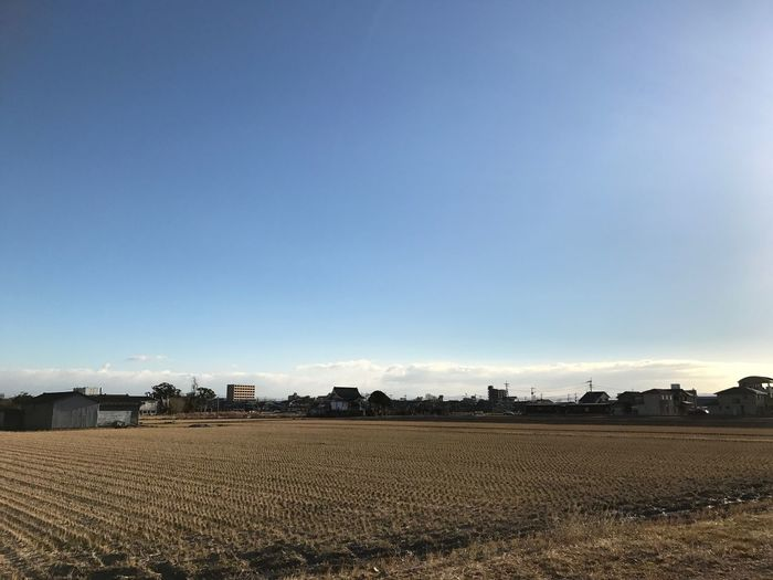 朝からフル活動🤣 Rural Scene Agriculture Farm Clear Sky Nature Field No People Building Exterior Tranquility Outdoors Day Landscape Architecture Sky Moon Japan Behappy Hello World EyeEm Best Shots Iphone7 1月 幸せ 冬 ランニング