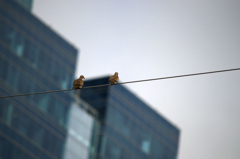 Tightrope chat