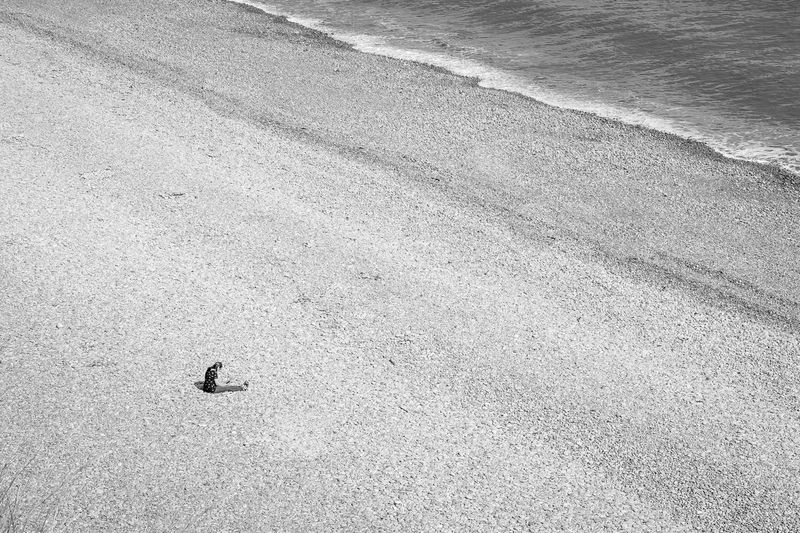 High angle view of insect on beach