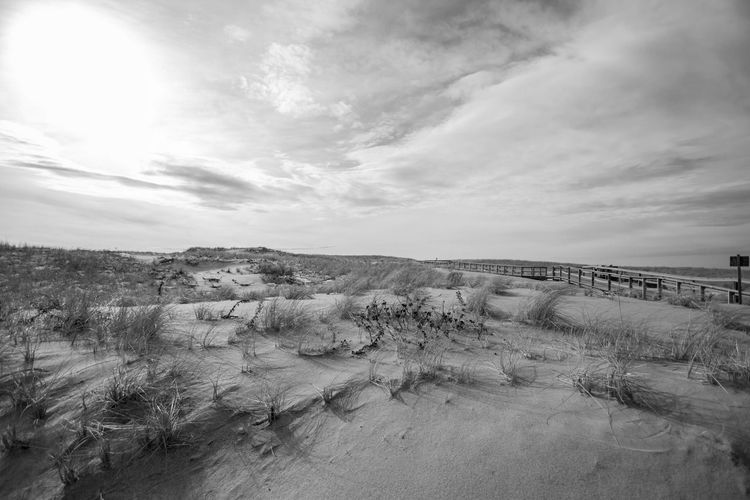 At B & W  Cape Cod Dunes Landscape National_day National_seashore Nature Provincetown  Race_Point Sand Dune Tranquil Scene Winter