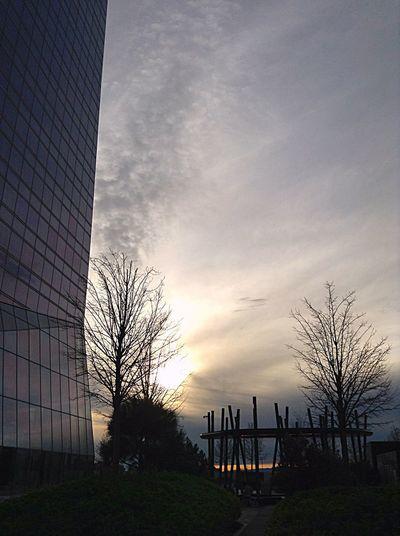 Una de Las Cuatro Torres. Madrid.
