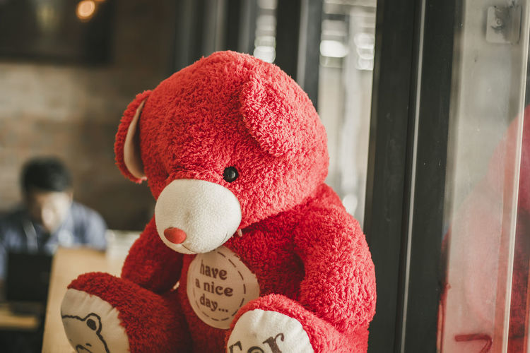 Close-Up Of Red Teddy Bear Against Window