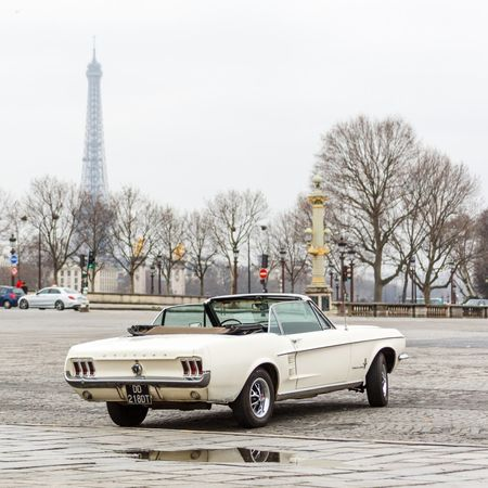 Brandon Walsh berverly hills 90210 Ford Ford Mustang 1965 Ford Mustang Mustang 1965 Traversee De Paris Car Tree Day City Outdoors Sky No People