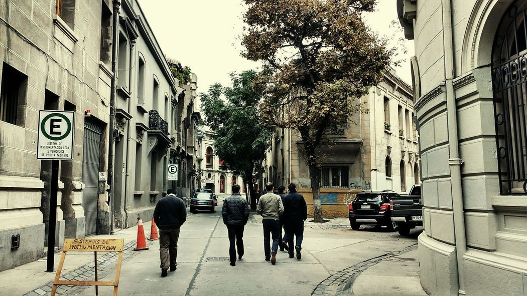 Streetphotography Nature Street Photography Green Street Santiago De Chile Eeyem Photography Street Walking Around People People Walking  Beatles Inspiration Beatles Beatles Everywhere Walking Around The City  Barrio Concha Y Toro People Photography People And Places