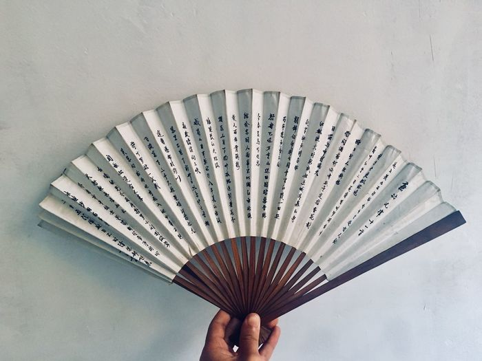 Cropped image of person holding hand fan
