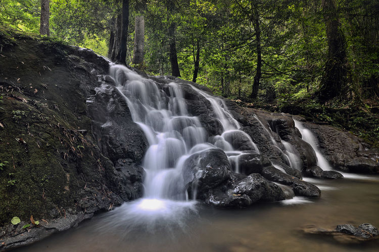 Waterfall in Phang Nga ,Thailand Thailand Beauty In Nature Falling Water Flowing Forest Land Long Exposure Non-urban Scene Outdoors Power In Nature Rainforest Rock Rock - Object Scenics - Nature Tree Water Waterfall