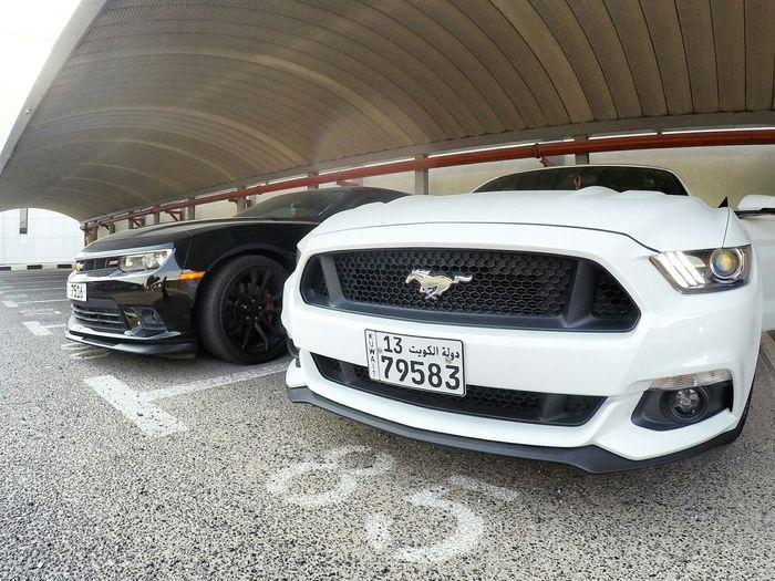 Mustang GT Camaro
