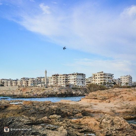 Jableh Lattakia Syria  جبلة سورية