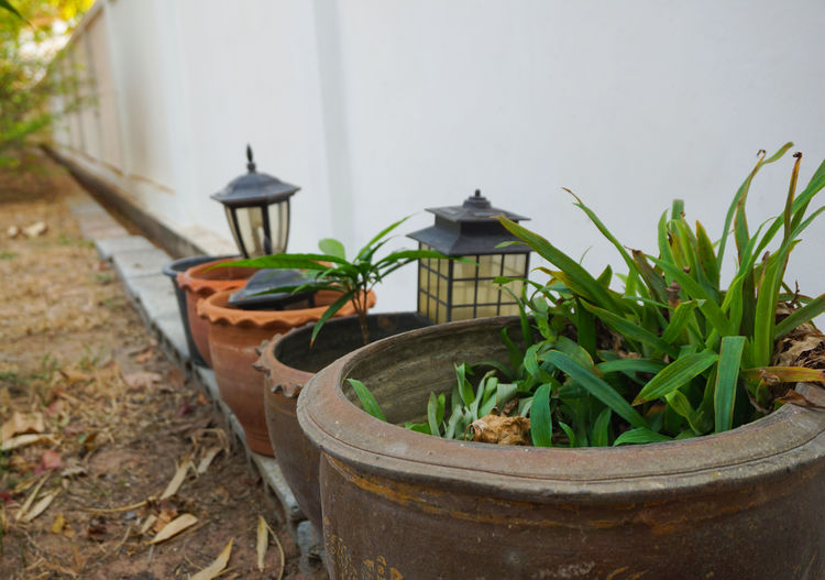 Garden decoration beside the house and plant pots.