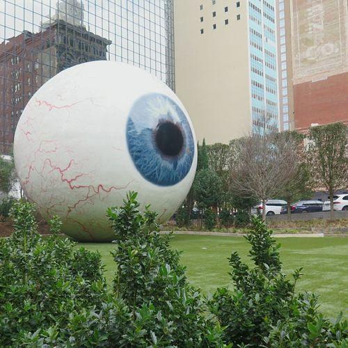 Dallas Dallas Texas Dallasisdallas Dallas-Streetart Outdoors Grass First Eyeem Photo