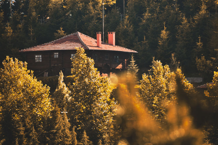 Traditional building by trees during autumn
