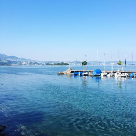 Zürichsee Zürichsee Zürisee Water Sea Sky Nautical Vessel Transportation Clear Sky Waterfront No People Sailboat Outdoors Nature Beauty In Nature Blue Day