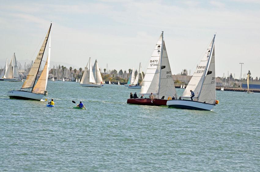 Sailboats Racing @ Embarcadero Cove 1 Action Sports Pastel Power Sailboats Tacking Colorful Sails