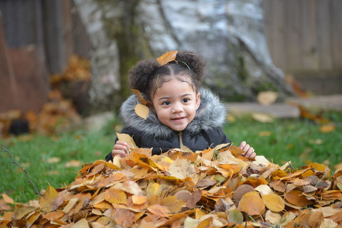 The pure innocence of Childs play,.. leaf engulfed. Childhood Child Portrait Looking At Camera One Person Happiness Leaf Autumn Innocence Smiling Outdoors Warm Clothing Seasons Change Little Creatures Innocence Of A Child Beauty And Nature BackYard Shenanigans Ponytails Autumn Mood Autumn Yellow Leaves We Are Their First Everyone Bean Playful Art Little People