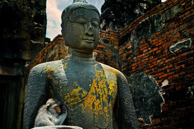 Close-up statue of buddha