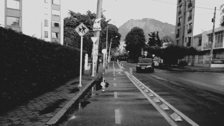 Bogotá Andez