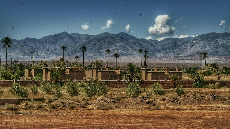 Palm Trees Nature Photography Western Mountains Monument Outdoor EyeEm Themoors Clouds Sky