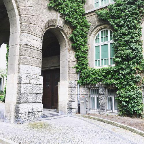 Braunschweig Magniviertel Oldtown History Library