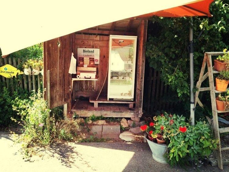 goatcheese minishop Summer Foodhunting Food Enjoying Life