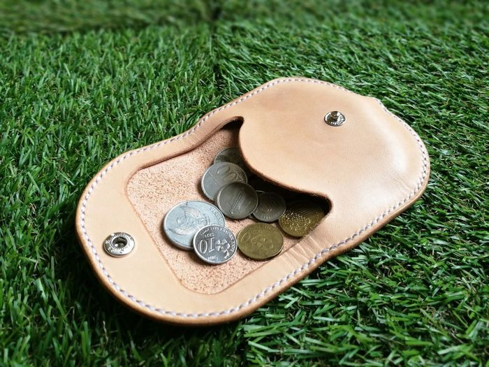 High angle view of coins in purse on grassy field