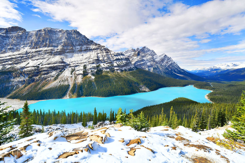 View from Bow Summit of Peyto lake in, Canada. Bow Summit Alberta Canada Banff National Park  Beautiful Canadian Rockies  Peyto Lake View Adventure Canada Lake Landscape Travel Destinations Turquoise Water Wilderness