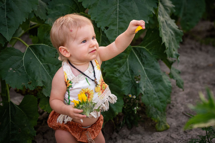 Cute baby girl holding flower while standing by plants