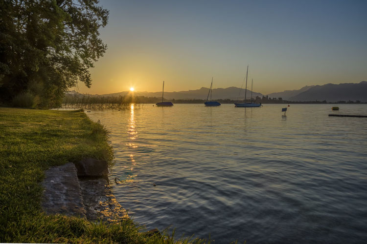 Sonnenaufgang in Feldbach Awesome Beauty Beauty In Nature Feldbach Lake Landscape Landschaft Nature Nature Nautical Vessel No People Outdoors Rapperswil Reflection Sailing Ship See Sky Sun Sunrise Switzerland Travel Travel Destinations Tree Water Zürichsee