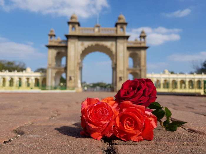 Architecture Built Structure Day Flower Focus On Foreground History Outdoors Red Rosé Rose - Flower Sky Travel Destinations The Still Life Photographer - 2018 EyeEm Awards The Great Outdoors - 2018 EyeEm Awards