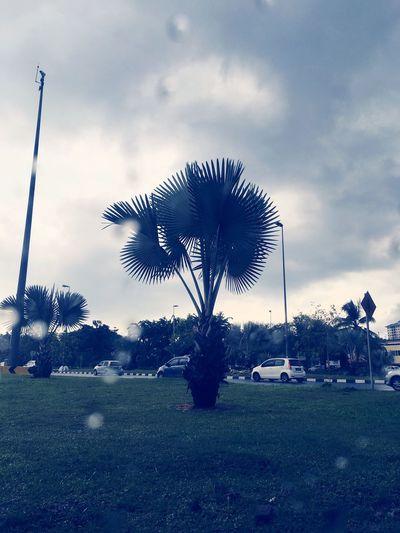 Check This Out Taking Photos EyeEm Rainy Days Kuala Lumpur Iphone6splus Reiimy Awesome