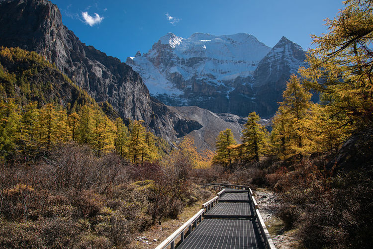 Walkway to snow mountain in yading