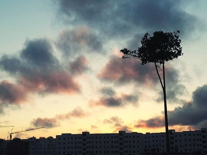 The sky takes