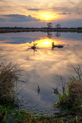 Sundown at the moor. Minden Sonnenuntergang Swamp Beauty In Nature Cloud - Sky Hille Idyllic Lake Moor  Nature Non-urban Scene Orange Color Outdoors Plant Real People Reflection Scenics - Nature Silhouette Sky Sunset Tranquil Scene Tranquility Water
