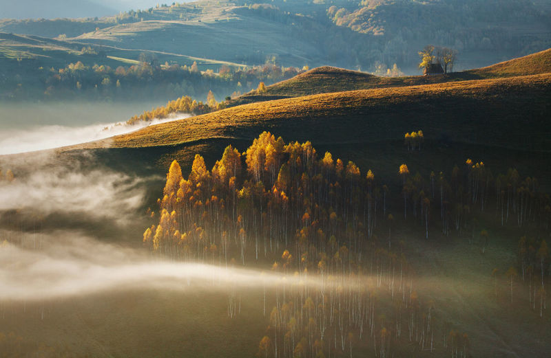 Landscapes from Apuseni Mountains, Carpathians - Romania. Rural foggy mornings in Dumesti village. Apuseni Atmosphere Autumn Carpathians Hills Light Moon Morning Nature Rural Tree Trees Weather Beauty Clouds Fog Foggy Forest Landscape Mountain Photography Scene Season  Sunrise