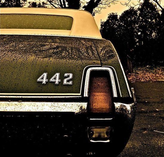 442 Cutlass Oldsmobile 442 Olds Cutlass 442
