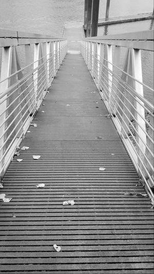 going down Wood - Material Architecture Built Structure Footbridge Railing Hand Rail Boardwalk