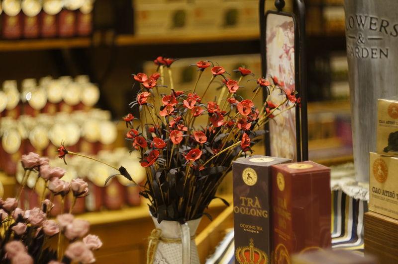 Arrangement Close-up Day Flower Flower Head Fragility Freshness Indoors  Nature No People Retail  Vase