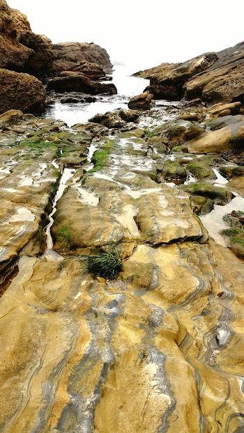 Point Lobos Monterey California