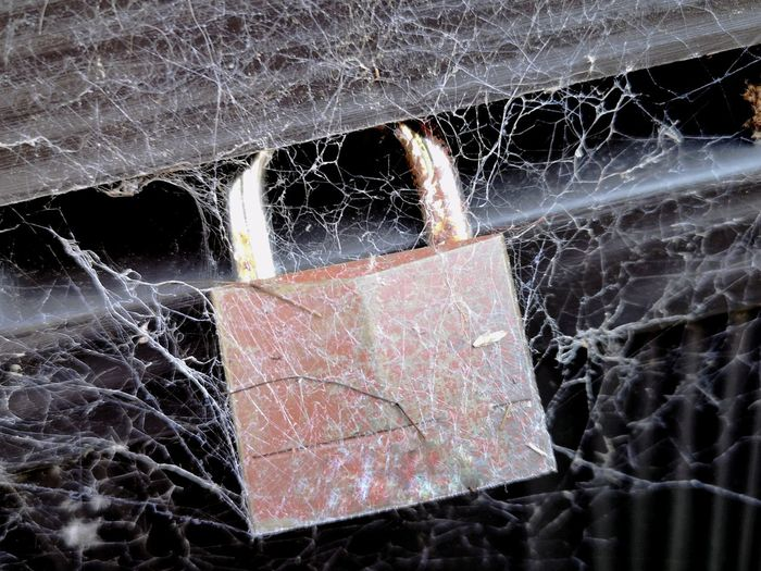 Old padlock Padlock Old Cobwebs Spider Web Forgotten Unused Distressed EyeEm Best Shots EyeEm Gallery Huawei P20 Pro Huawei P20 Pro Photography Spider Web Close-up Web Spider Discarded Worn Out Weathered Bad Condition