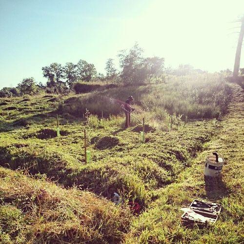 Nuno Barreto no farmville da vida real =)