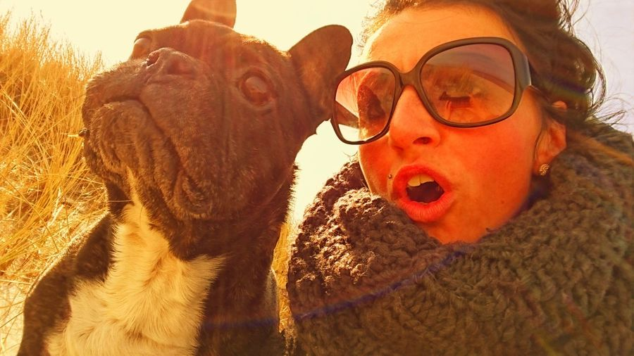 Bully* A Real LoVe*Beach* Relaxing *Prerow* French Bulldog First Eyeem Photo True Love Real Love