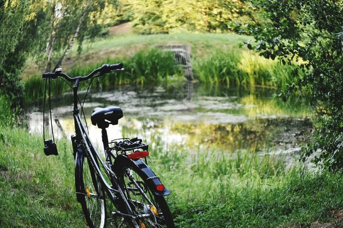 Water Bicycle Stationary Grass