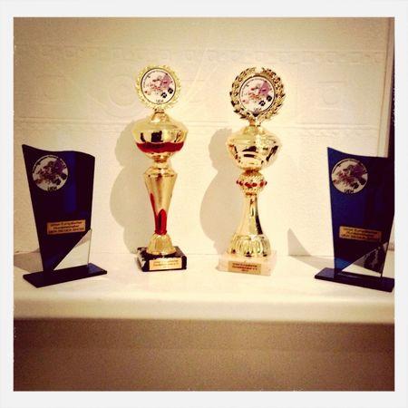 1. Platz Welpen Klasse (Rasse Hunde) Baby CHAMPION 1. Platz Schönheitswettbewerb und 1. Mischlinge und 1. Schönheitswettbewerb Mischlinge