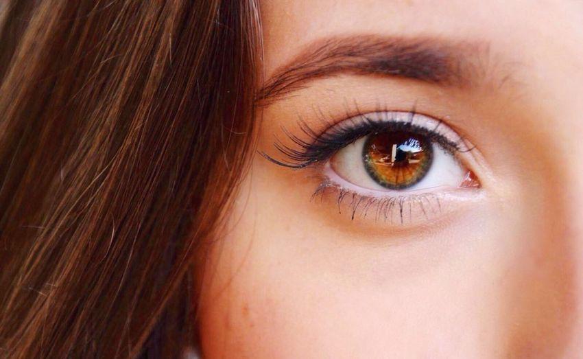 👀 Human Eye