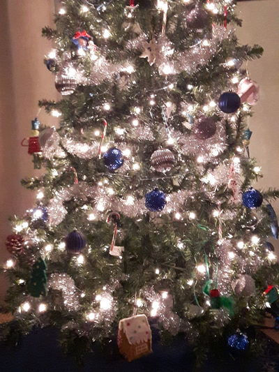 Christmas Christmas Tree Christmas Decoration Christmas Lights Illuminated Christmas Ornament No People Holiday - Event Close-up Indoors  Tradition Canada Samsung Galaxy S5 Neo Spruce Grove, Alberta Bright Glowing Atmospheric Mood Blue Silver  White Sparkle Garland Candy Canes