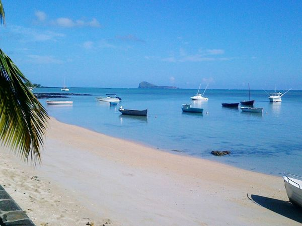 Sea Beach Sand Tranquility Water Scenics Seaviewcollection Ilemaurice île Maurice  Beach Life Palm Tree Travel Destinations Island Life Mauritius Island  Summer Vibes Seaview EyEmNewHere