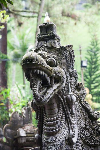 Holiday in Bali, Indonesia - Tirta Empul Holy Water in Tampaksiring Bali Bali, Indonesia Buddism Day Empul Heritage Heritage Site Hindu Hindu Temple Holy Holy Water INDONESIA Outdoors Praying Structure Tampaksiring Temple Tirta Empul Tirta Empul Temple Tirtaempul  Water